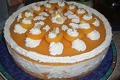 Aprikosen - Joghurt - Torte 8