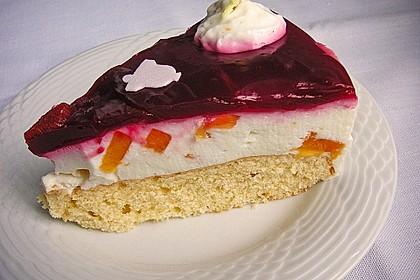 Aprikosen - Joghurt - Torte 16