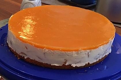 Aprikosen - Joghurt - Torte 17