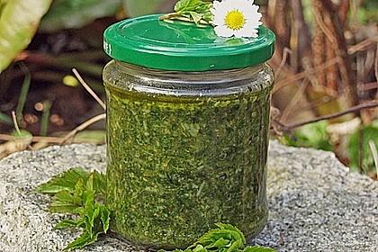 Pesto aus Giersch und / oder anderen Wildkräutern