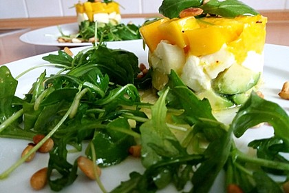 Avocado-Mozzarella-Salat mit Mango 16