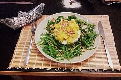 Avocado-Mozzarella-Salat mit Mango 49