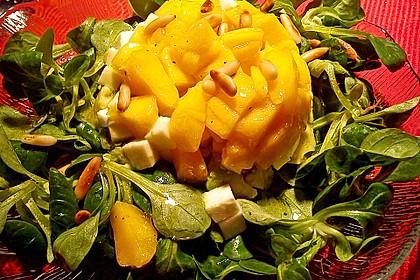 Avocado-Mozzarella-Salat mit Mango 43