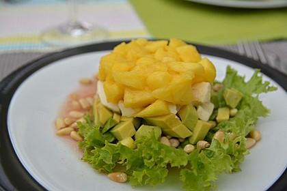 Avocado-Mozzarella-Salat mit Mango 19