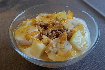 Gesunde Cornflakes 4