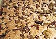 Schwäbischer Zwetschgenkuchen