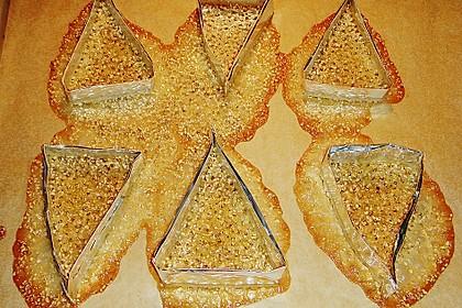 Sesam - Krokant - Hippen oder Körbchen 20