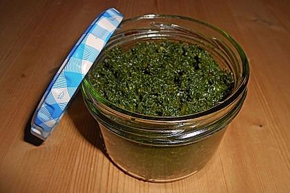 Liebstöckl (Maggikraut) - Paste 2