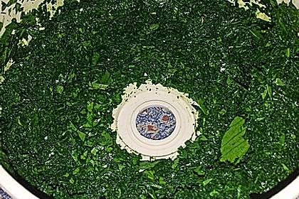 Liebstöckl (Maggikraut) - Paste 13