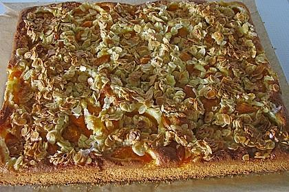 Schneller Blechkuchen mit Obst 3