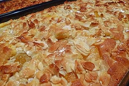 Schneller Blechkuchen mit Obst 11