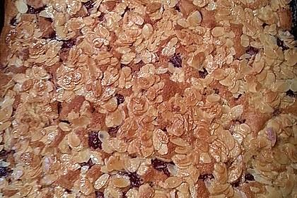 Schneller Blechkuchen mit Obst 17