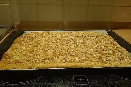 Schneller Blechkuchen mit Obst 25