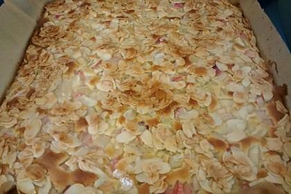 Schneller Blechkuchen mit Obst 27