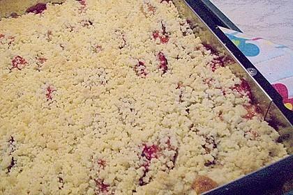Zwetschgenkuchen 4 - schichtig 23