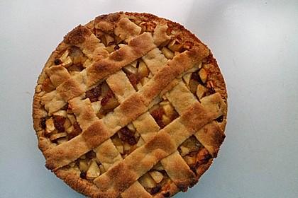 Apfeltorte / Apfelkuchen mit Apfelmus 45