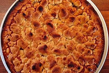 Apfeltorte / Apfelkuchen mit Apfelmus 47