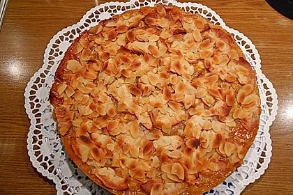 Fruchtiger Apfelkuchen 12