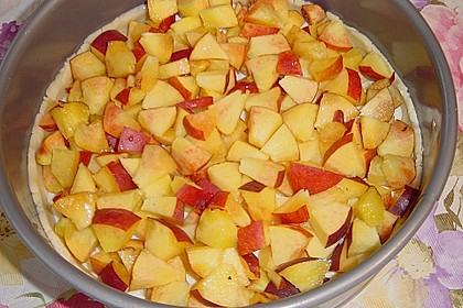 Obstkuchen mit Streuseln 29