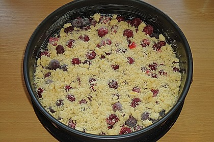 Obstkuchen mit Streuseln 15
