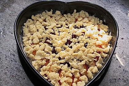 Obstkuchen mit Streuseln 13