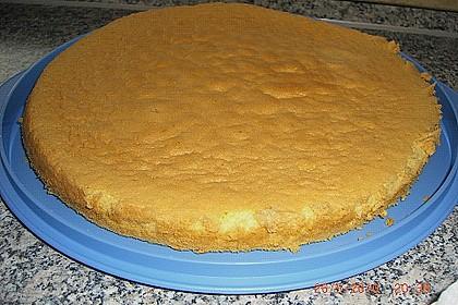 Schneller Biskuit für Obstkuchen 52