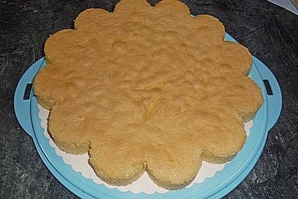 Schneller Biskuit für Obstkuchen 44