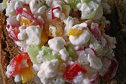 Hüttenkäse - Salat 20