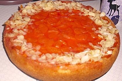 Mandarinen - Schmand - Kuchen 17