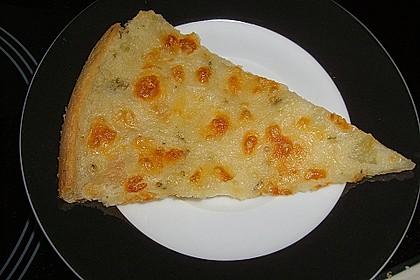 Albertos dünnes Pizzabrot 31