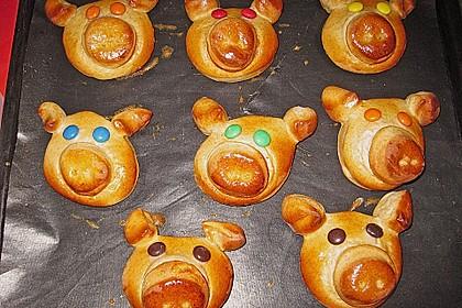 Hefe - Schweine 2