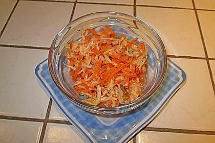 Karotten - Sellerie - Apfel - Salat 12