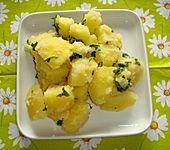 Petersilien - Schwenk - Kartoffeln