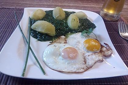 Spinat, Spiegelei und Salzkartoffeln 24