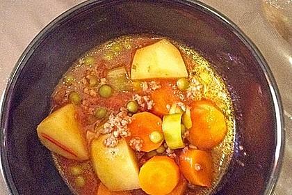 Bunter Hackfleisch - Gemüse - Eintopf 20