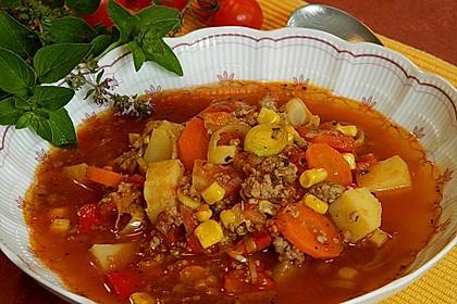 Bunter Hackfleisch - Gemüse - Eintopf 15