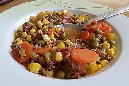 Bunter Hackfleisch - Gemüse - Eintopf 12