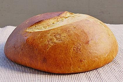 Französische Brioche mit Weizensauerteig 6