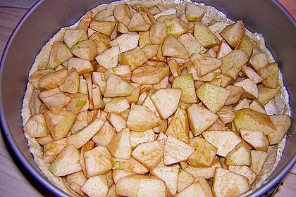 Veganer Apfelkuchen  mit Zimtstreuseln 73
