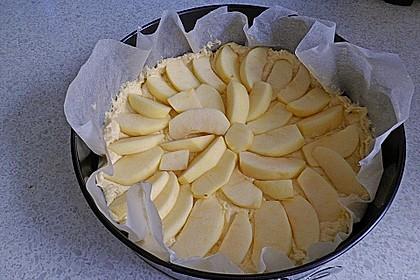 Veganer Apfelkuchen  mit Zimtstreuseln 66