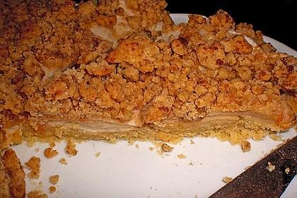 Veganer Apfelkuchen  mit Zimtstreuseln 10