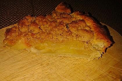 Veganer Apfelkuchen  mit Zimtstreuseln 38