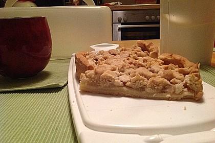 Veganer Apfelkuchen  mit Zimtstreuseln 61