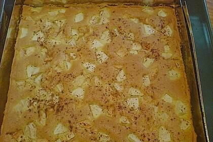 Apfelkuchen 30