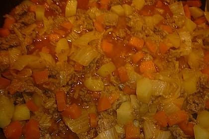 Chinakohl - Eintopf mit Hackfleisch im Schnellkochtopf 3