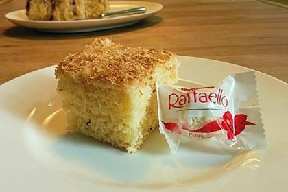Kokos - Buttermilch - Kuchen 16