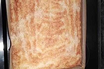 Kokos - Buttermilch - Kuchen 48