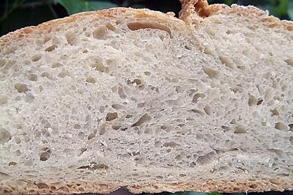 No - Knead - Bread mit Frischhefe 41