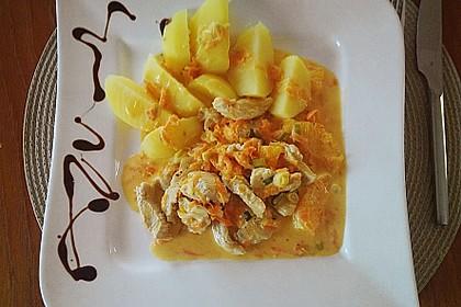 Putengeschnetzeltes mit Karotten - Orangen - Soße 26