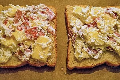 Überbackener Toast 5